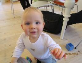 Finns and True Finns continue to shrink