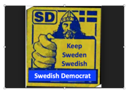 The rise of populism & the Sweden Democrats