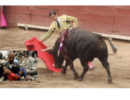 What bullfights, children & women have in common?
