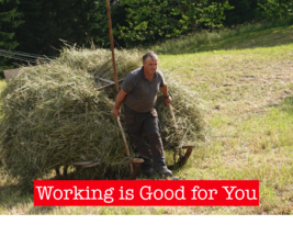 Working is good for you – Young & Old